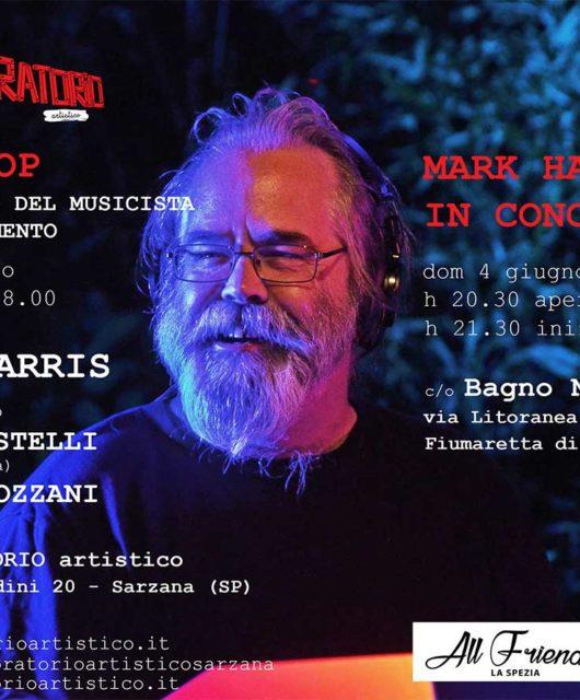 mark_harris_workshop_mestiere_del_musicista